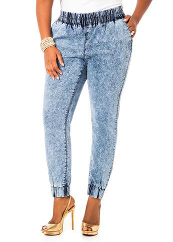 f8609687352 Ashley Stewart Plus Size Jeans - Plus Size Jean Shop.com
