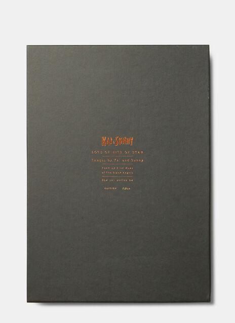 Kai & Sunny 'Lots of Bits of Star' Box Set of Prints
