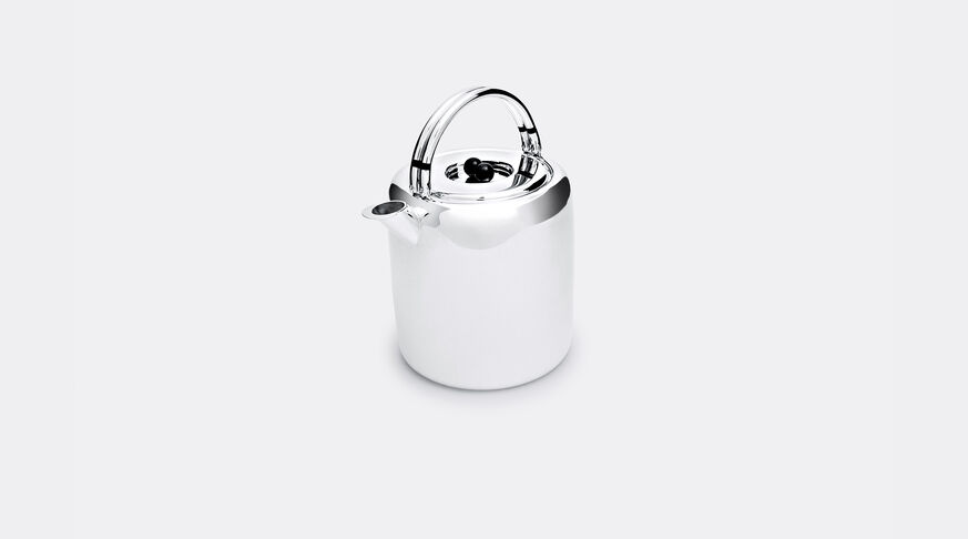 Silver Handle Teapot