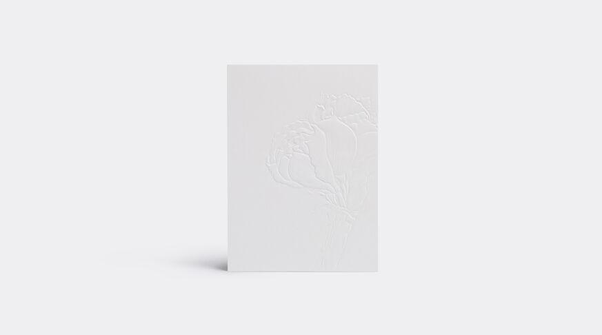 Greeting Card Amaryllis Cotton