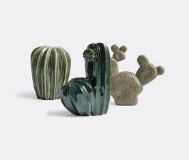 Cacti Uno