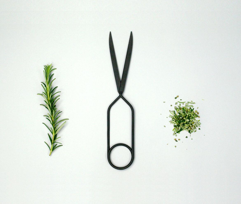 Spring Scissors S - Wallpaper* Edition