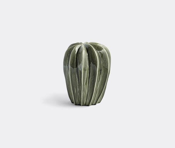 'Cacti Uno'