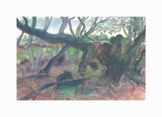 """Günter Grass: Bild """"Waldlandschaft auf Moen"""" (2001), ungerahmt"""
