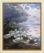 "Picture ""Gees on Overcast Shore"""