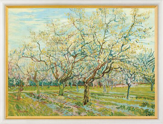 """Vincent van Gogh: Bild """"Der weiße Obstgarten"""", gerahmt"""