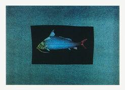 """Bild """"Blauer Fisch"""", ungerahmt"""