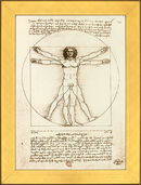 "Picture ""proportion scheme of the human figure by Vitruvius"""