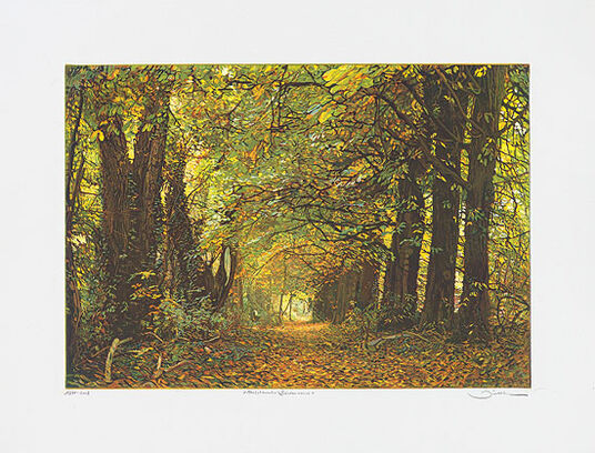 "Günther Hermann: Picture ""Autumn Wood - Biedensand"""