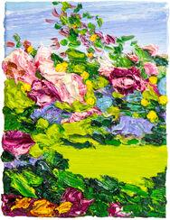 """Bild """"Blumen im Park von Schloss Glienicke II"""" (2016) (Unikat)"""