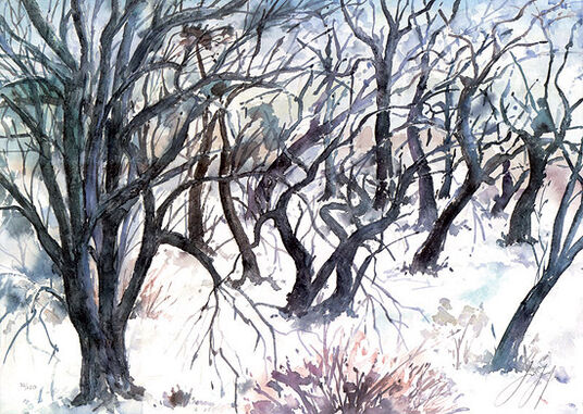 "Günter Grass: Picture "" countryside in wintertime tree """