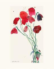 """Bild """"Junge Mohnblüten"""", ungerahmt"""