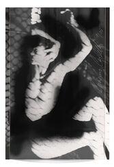 "Bild ""Alexandra"" (1999)"