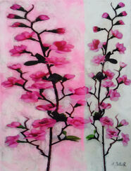 "Bild ""Transparency, Roses"" (2012)"