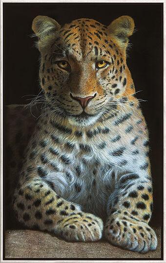 """Gerd Bannuscher: Bild """"Leopard"""", gerahmt"""