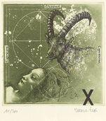 """Picture """"Capricorn"""" (22.12.-20.1.)"""