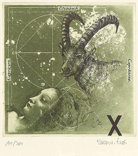 """Bodo W. Klös: Picture """"Capricorn"""" (22.12.-20.1.)"""