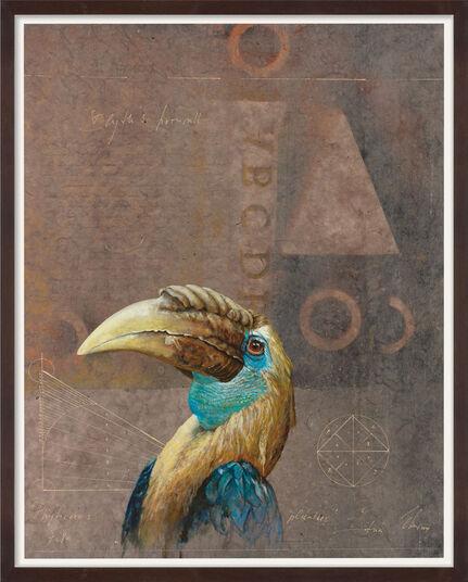 "Wolfgang Zelmer: Bild ""Rhyticeros plicatus 7/VIII Papua-Hornvogel"" (2014) (Unikat)"