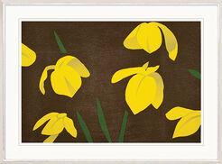 "Bild ""Yellow Flags"" (2013)"