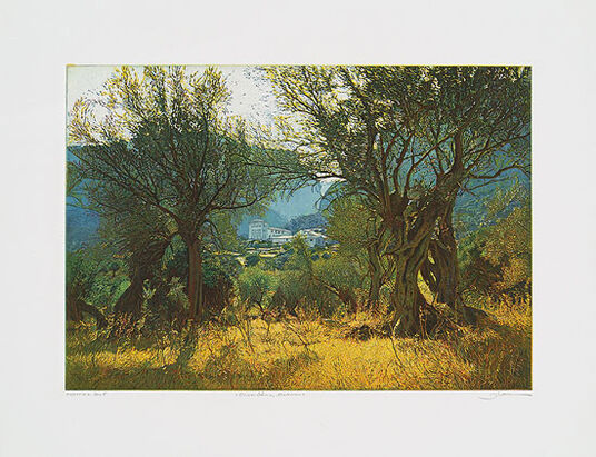 "Günther Hermann: Picture ""Olive Trees, Mallorca"""