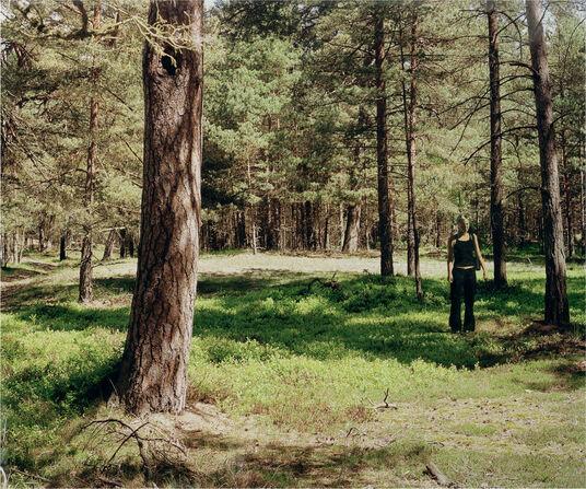"""Marc Lüders: Bild """"Figur 658-4-1"""" (2004) (Original / Unikat)"""