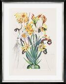 "Bild ""Narcissus Telephonans Inondis"" (1972)"