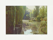 """Picture """"Giverny I"""""""