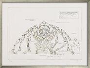 """Bild """"Maschinentier Die Spinne"""" (2008), gerahmt"""