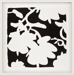 "Bild ""Lantern flowers - White and Black"" (2017)"