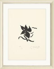 """Bild """"Fleur noire"""" (1962)"""