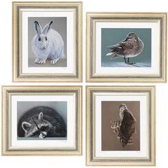 4 Tierbilder im Set