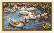 "Picture ""Nine ducks in the early spring"""