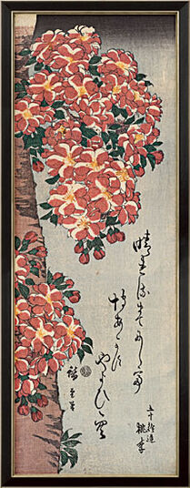 "Ando Hiroshige: Picture ""Double Cherry in Flower"" with frame"