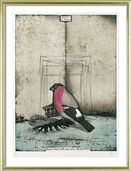 "Picture  ""Bullfinch of Hanau"""