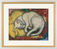 """Picture """"The white cat"""" in gallery framing"""