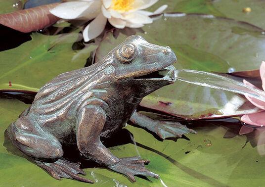 """Gargoyle frog"", Bronze"