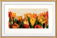 "Picture ""Tulip See"""