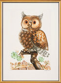 "Picture ""The Owl"""