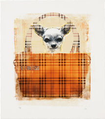 "Bild ""Burberry Dog"" (2014)"