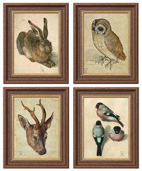 Vier Tierbilder im Set