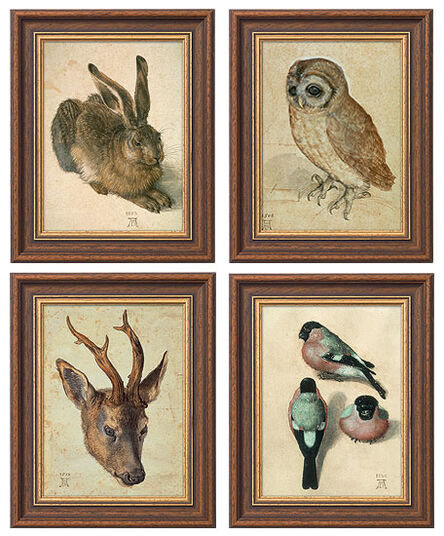Albrecht Dürer: Four animal pictures in one set