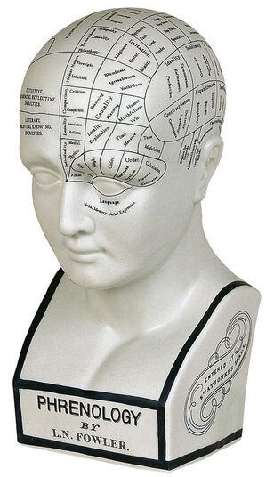 Phrenologic Head