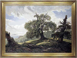 "Picture ""oaks at the sea"""