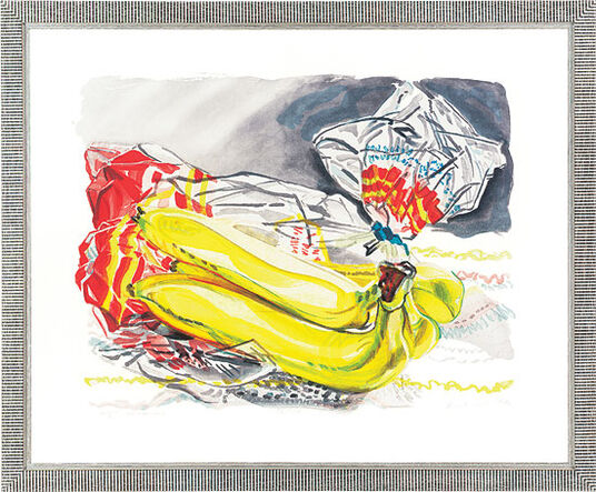 "Janet Fish: Painting ""Bag of Bananas"""