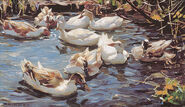 """Picture """"Nine ducks in the early spring"""""""