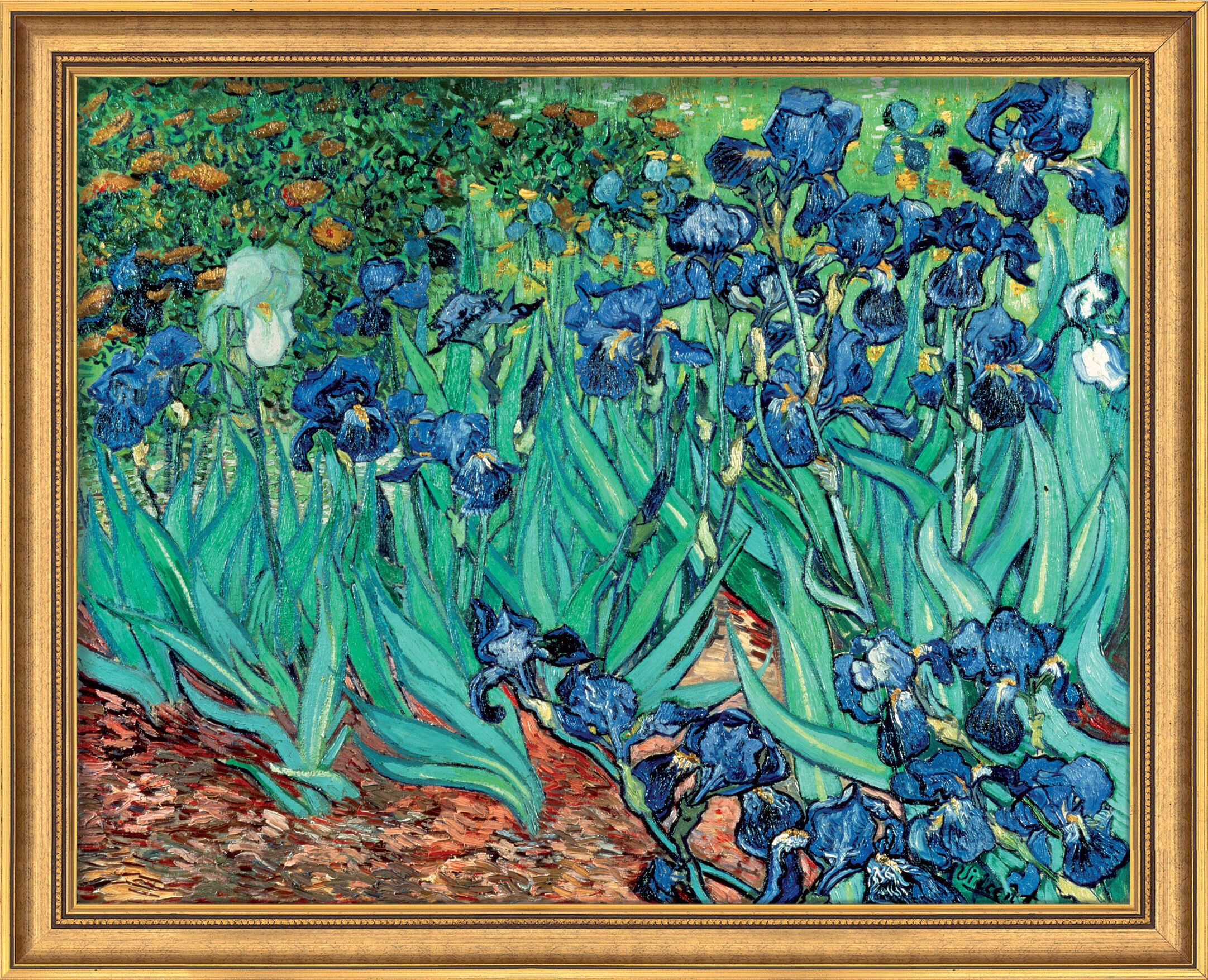 Famous irises by vincent van gogh for sale null null recommendation vincent van gogh reviewsmspy