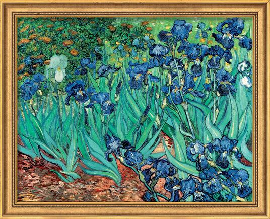 """Vincent van Gogh: Bild """"Iris (Schwertlilien)"""" (1889), gerahmt"""
