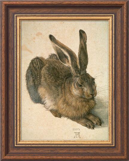"Albrecht Dürer: Bild ""Junger Feldhase"" (1502), gerahmt"