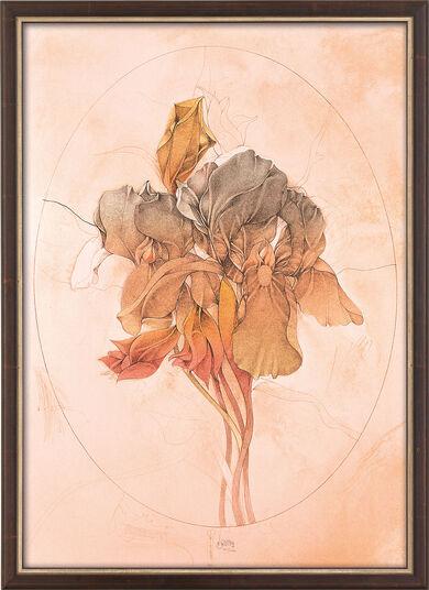 "Bruno Bruni: Bild ""Viola tricolor"", gerahmt"