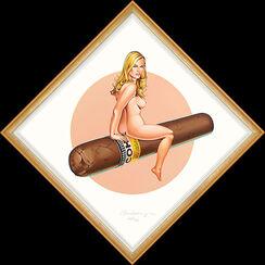 """Bild """"Hav-a-Havana 6"""" (2005)"""